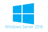 Microsoft Windows Server 2016 Remote Desktop Services CAL OEM